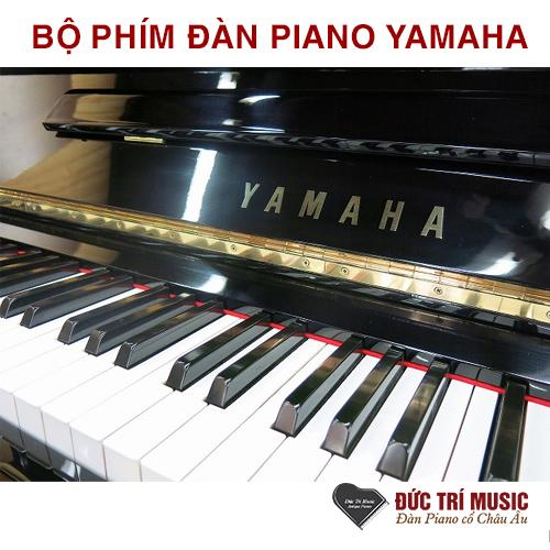 Piano đức trí phân phối Yamaha U3