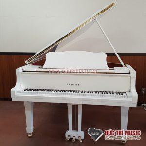 Đàn piano giá sỉ màu trắng yamaha G1B