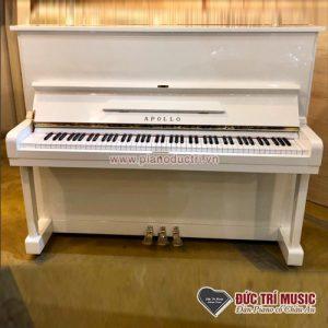 Bán giá sỉ đàn piano apollo A5 màu trắng