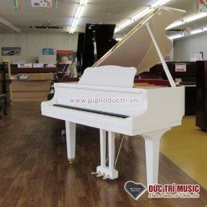 Đức trí music bán đàn piano giá sỉ tại gò vấp