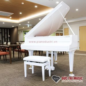 Piano đức trí bán đàn grand yamaha màu trắng giá rẻ nhất